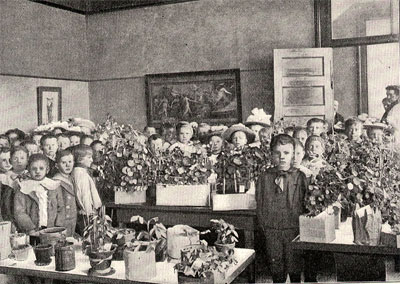 A children's flower show in a Worchester, Massachusetts, classroom. From Clifton Hodge's Nature Study and Life. Author's own collection.